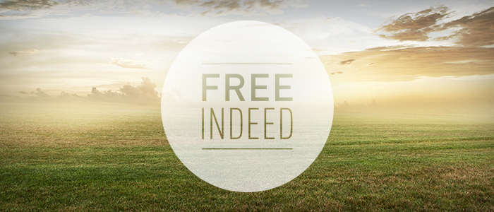 Free Indeed – Church Sermon Series Ideas