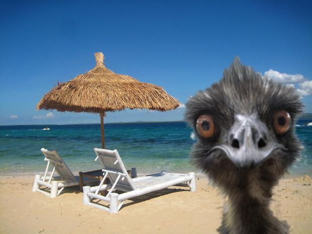 beach-unedited
