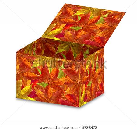 stock-photo-autumn-leaves-box-5738473
