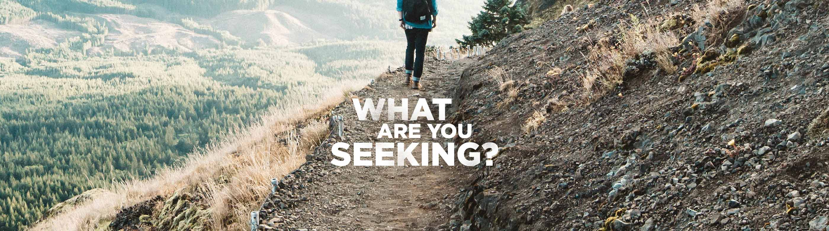 what-are-you-seeking-sermon-series-idea