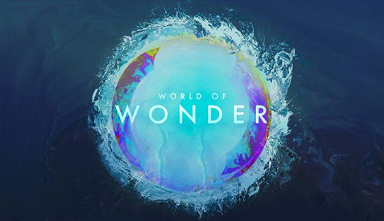 World-Of-Wonder_LowRes-WebSlide