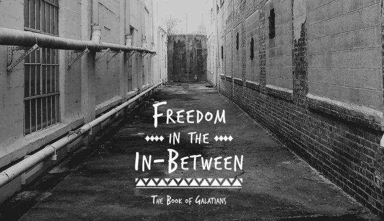freedom-series-artwork-1024x576