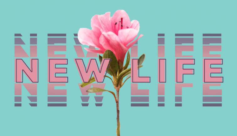 new-life-sermon-series-graphics
